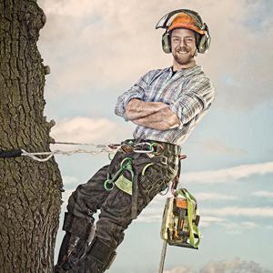tree surgoen placeholder